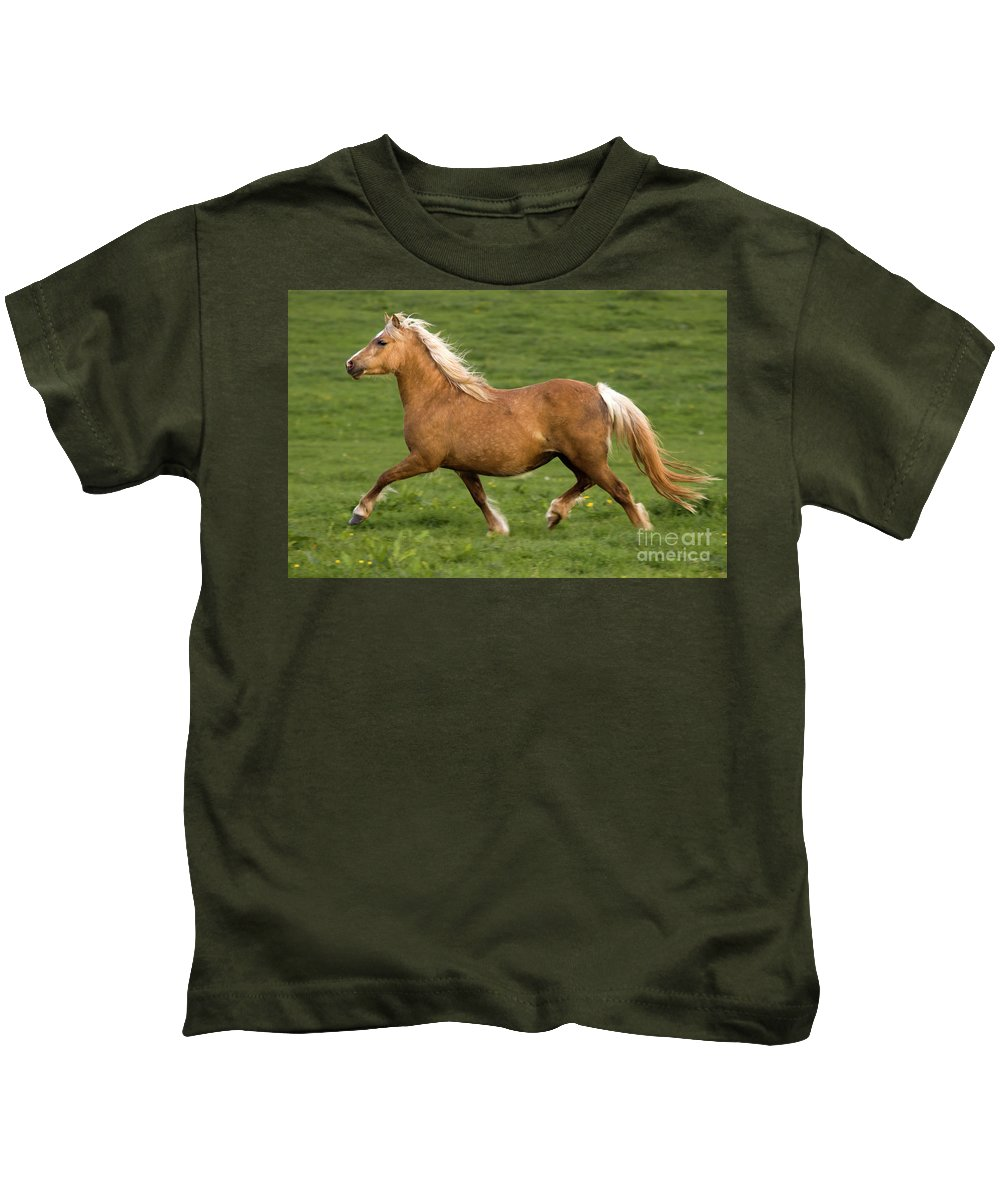Pony Kids T-Shirt featuring the photograph Prancing Pony by Angel Ciesniarska