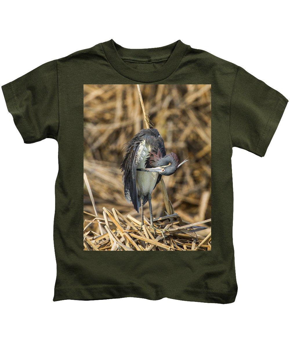 Doug Lloyd Kids T-Shirt featuring the photograph Preening by Doug Lloyd
