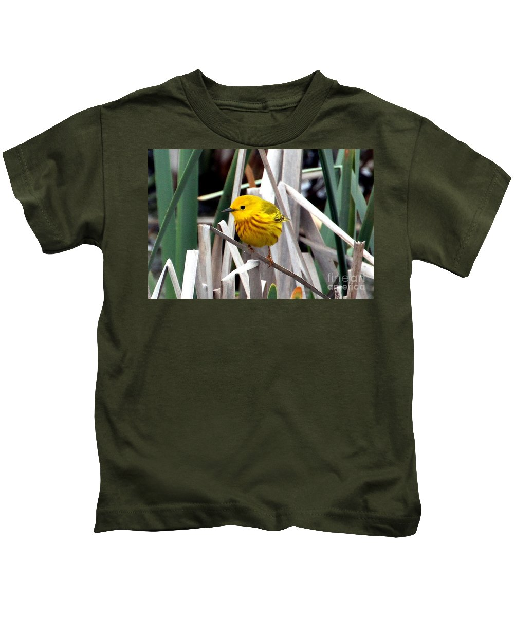 Yellow Warbler Kids T-Shirt featuring the photograph Pretty Little Yellow Warbler by Elizabeth Winter