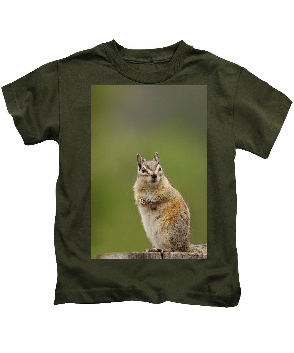 Squirrel Kids T-Shirt featuring the photograph Pretty Please by Donna Blackhall