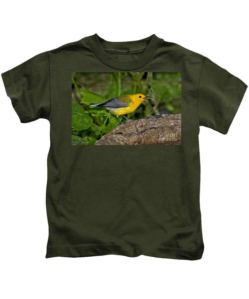 Prothonotary Warbler Kids T-Shirt featuring the photograph Prothonotary Warbler by Anthony Mercieca
