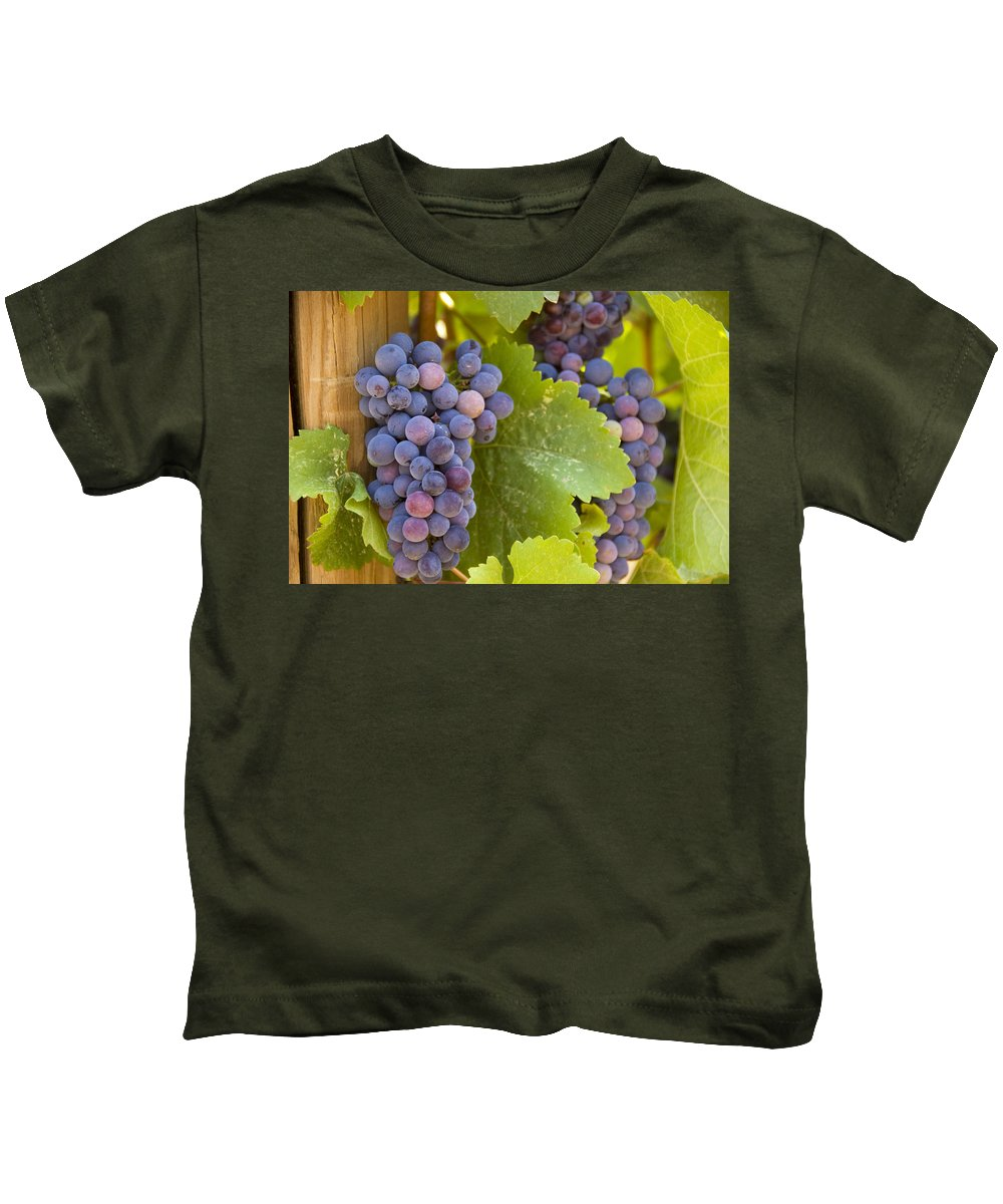 Grapes Kids T-Shirt featuring the photograph Purple Pleasure by Tara Fisher