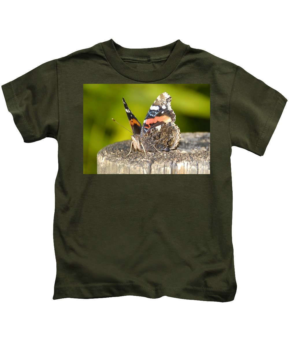 Red Admiral Butterfly Kids T-Shirt featuring the photograph Red Admiral Butterfly by David Lee Thompson