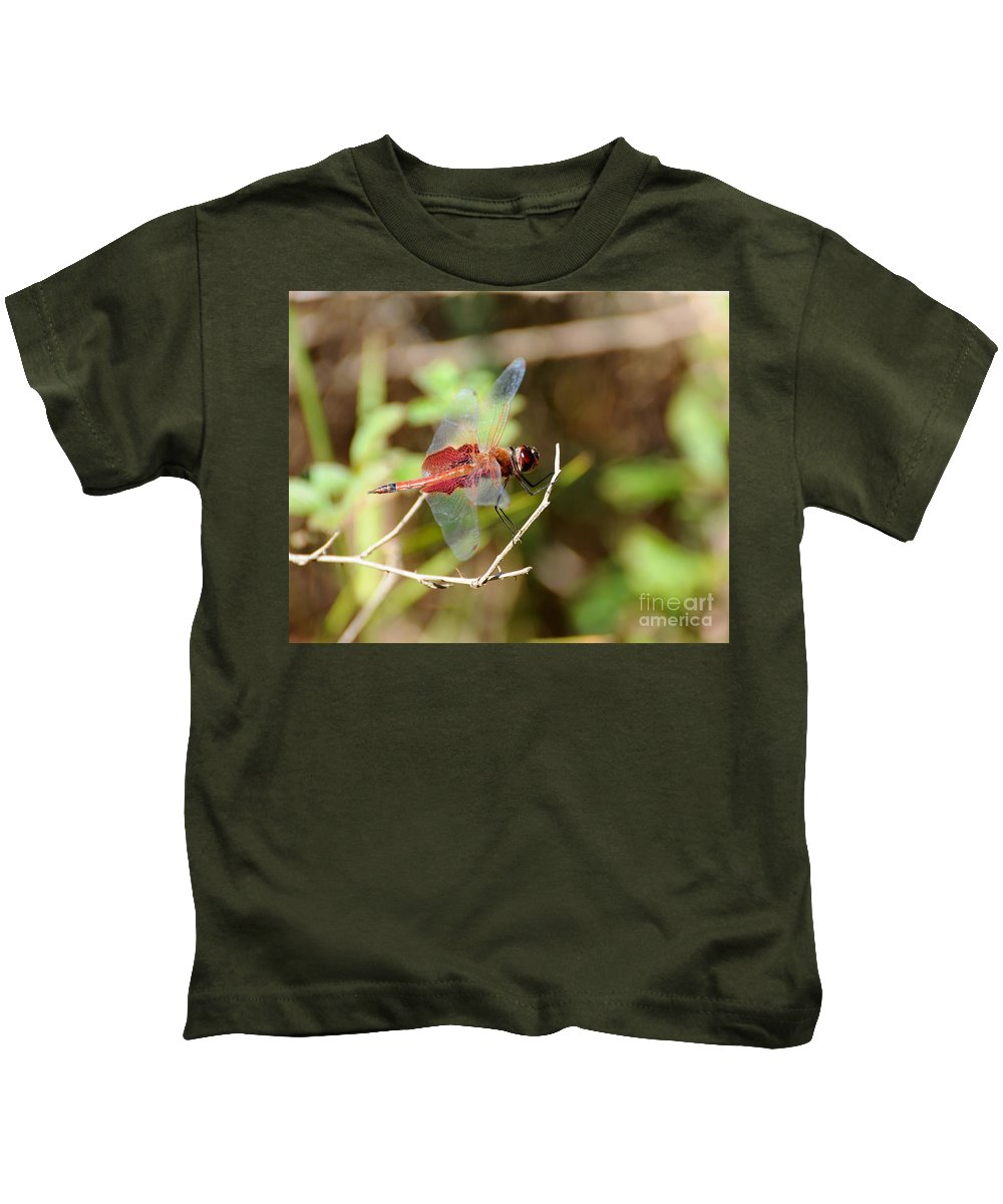 Dragonfly Kids T-Shirt featuring the photograph Red Dragon by Al Powell Photography USA