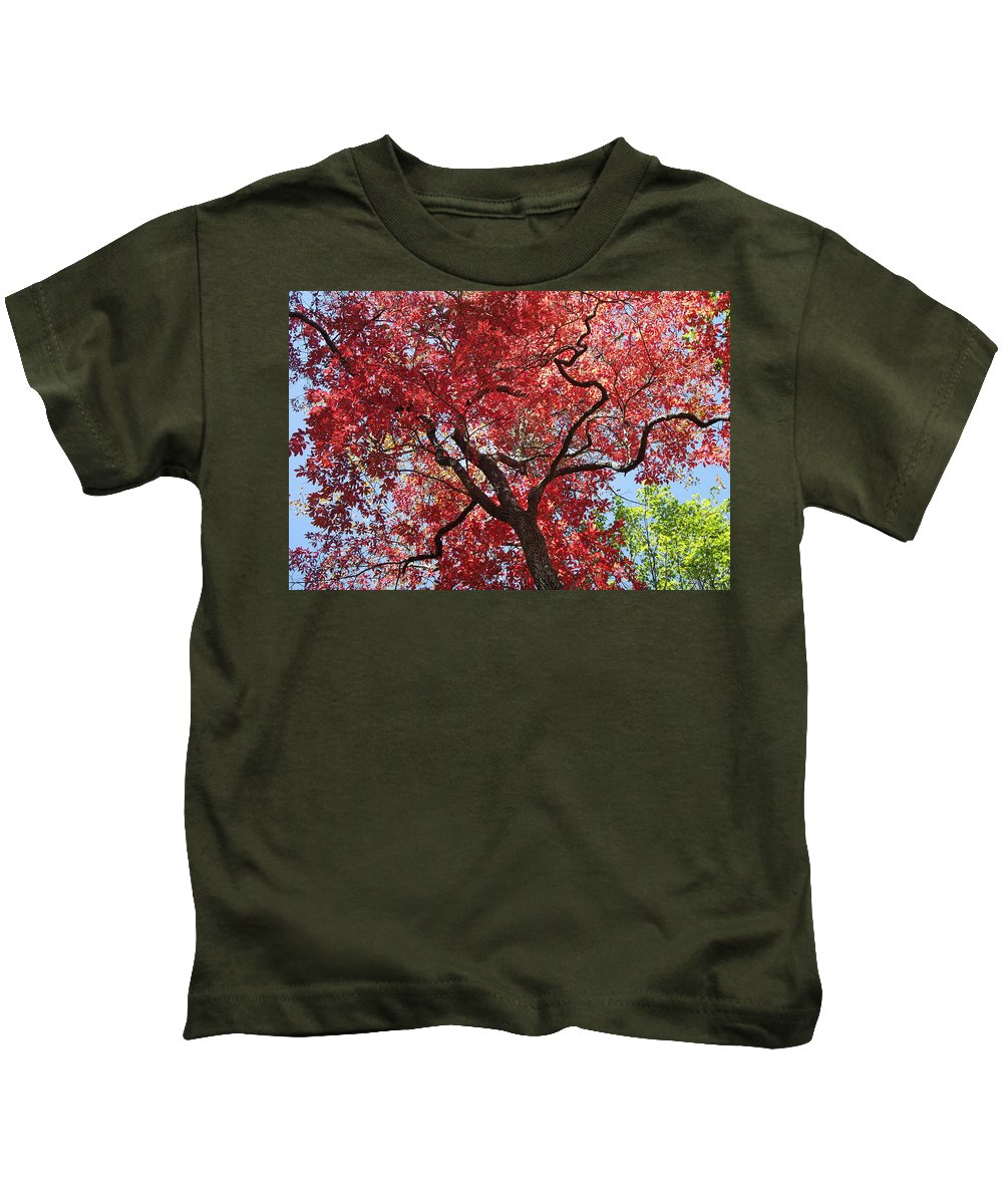 Plants Kids T-Shirt featuring the photograph Red Leaves On Tree by Duane McCullough