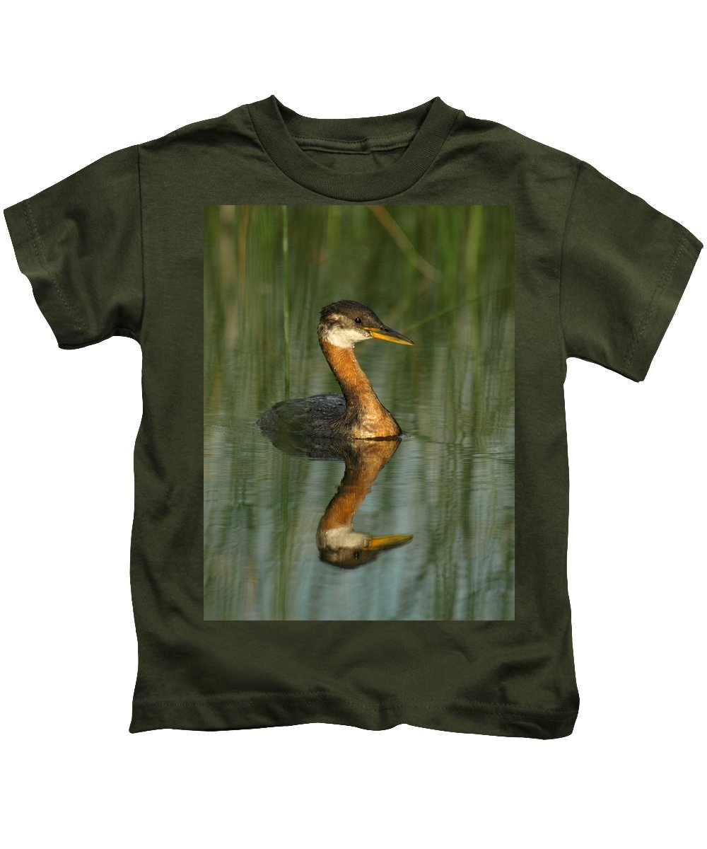 Peterson Nature Photography Kids T-Shirt featuring the photograph Red-necked Grebe by James Peterson