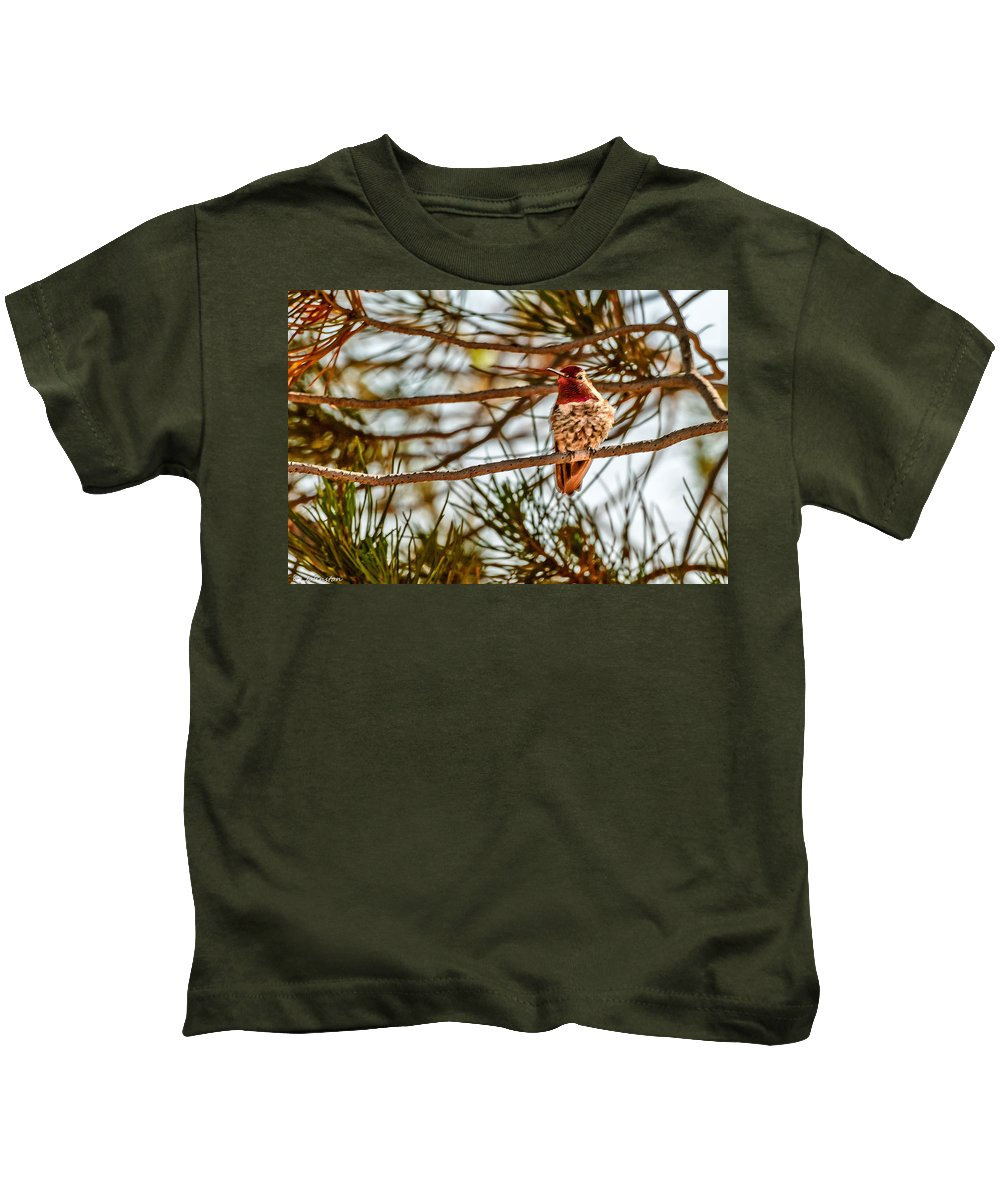 Bird Kids T-Shirt featuring the photograph Red Rock Country Hummingbird by Bob and Nadine Johnston