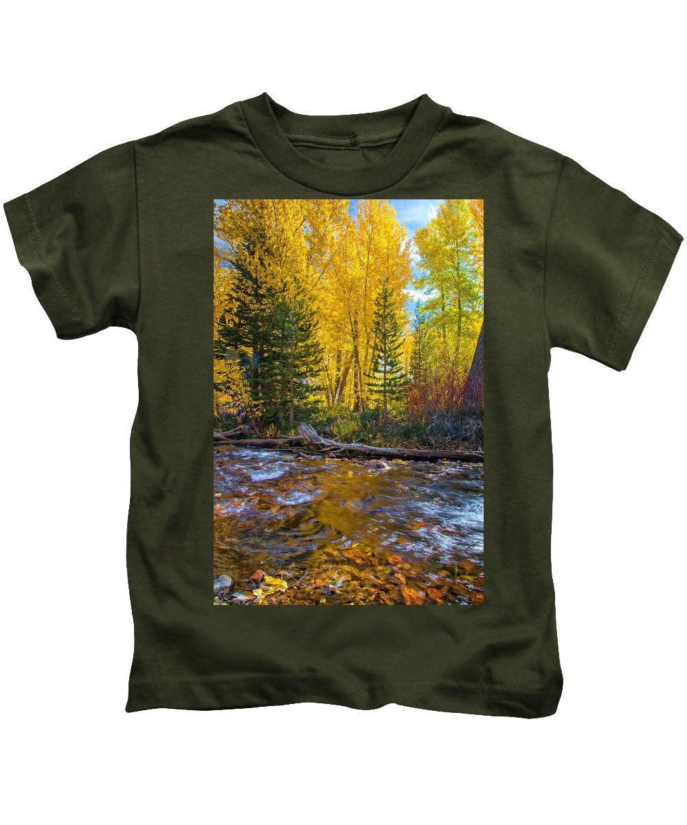 Fall Kids T-Shirt featuring the photograph Reflections Of Gold by Lynn Bauer