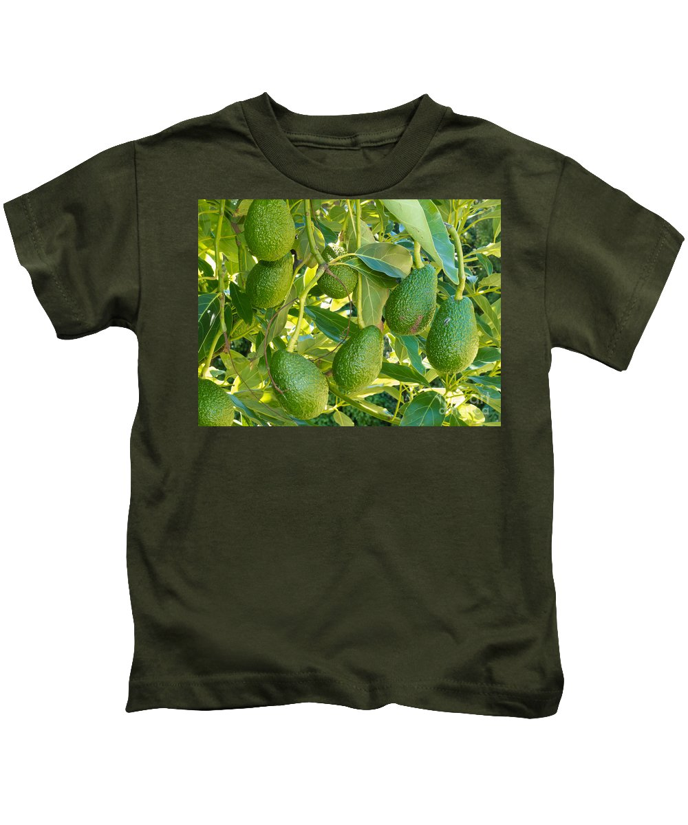 Agricultural Kids T-Shirt featuring the photograph Ripe Avocado Fruits Growing On Tree As Crop by Stephan Pietzko