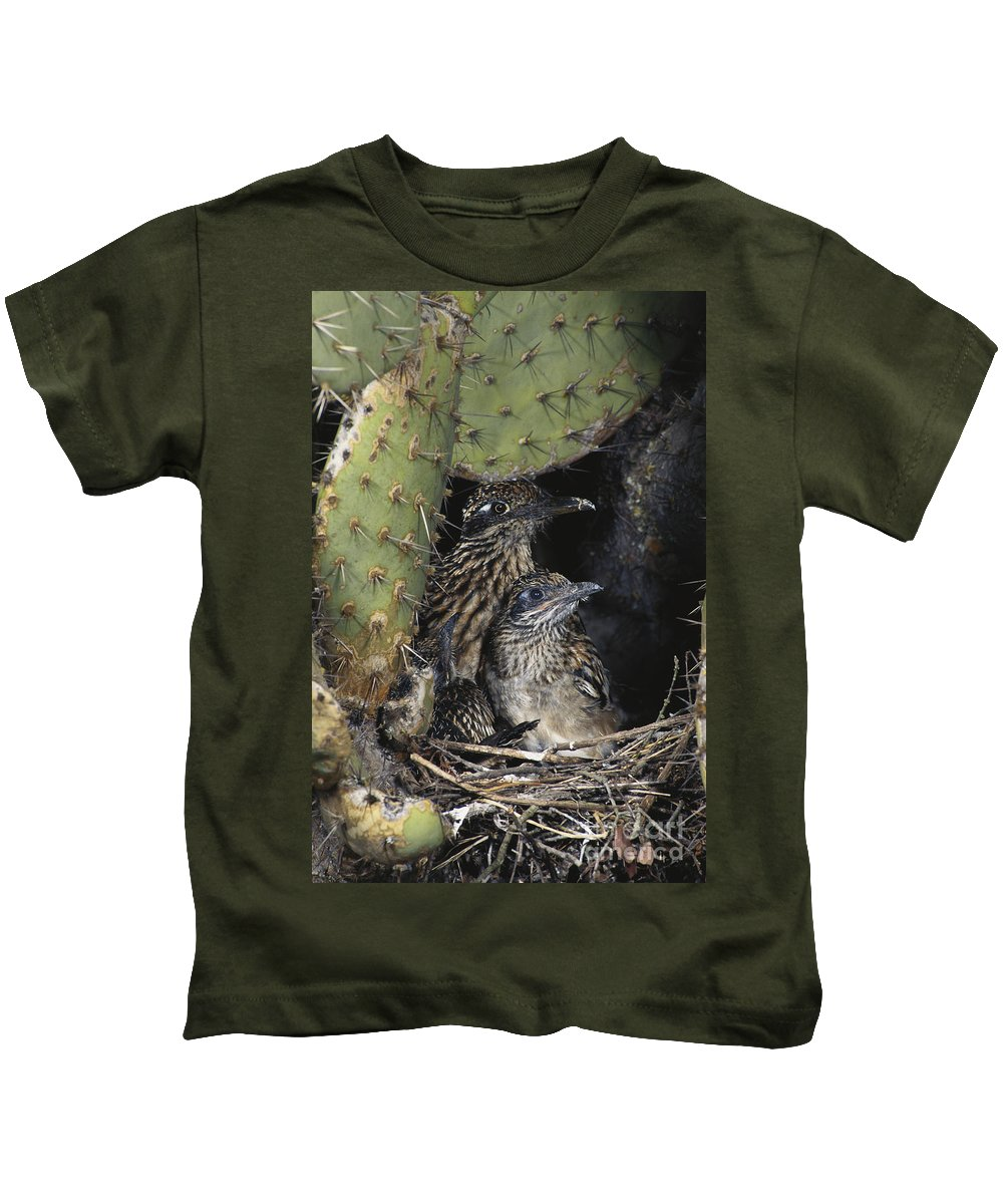Greater Roadrunner Kids T-Shirt featuring the photograph Roadrunners In Nest by Anthony Mercieca