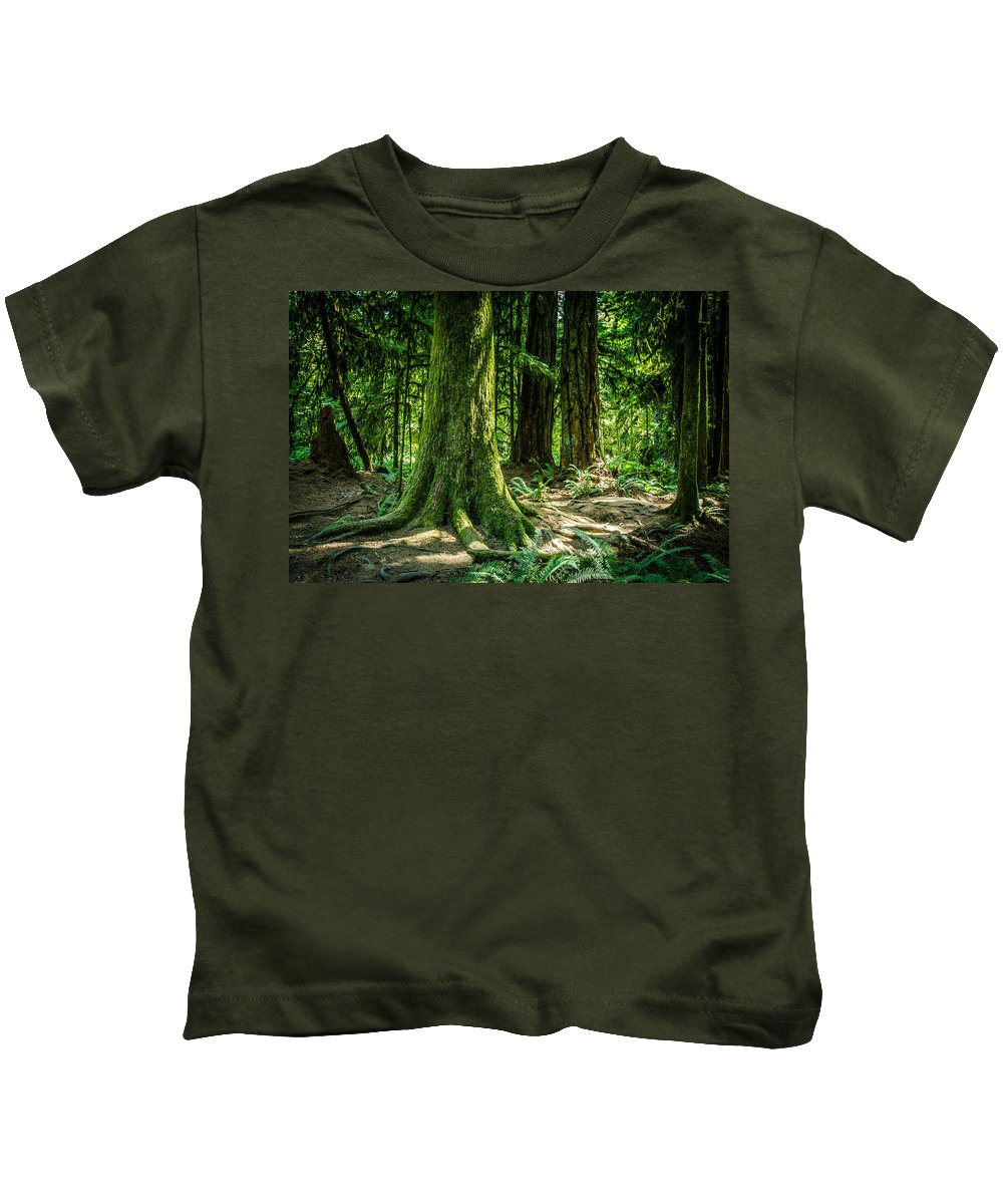 Old Growth Forest Kids T-Shirt featuring the photograph Root Feet Collection 3 by Roxy Hurtubise