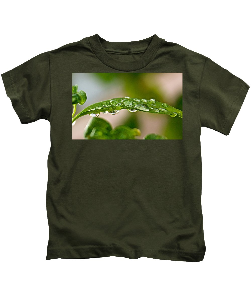 Water Drops Kids T-Shirt featuring the photograph Roses by Kume Bryant