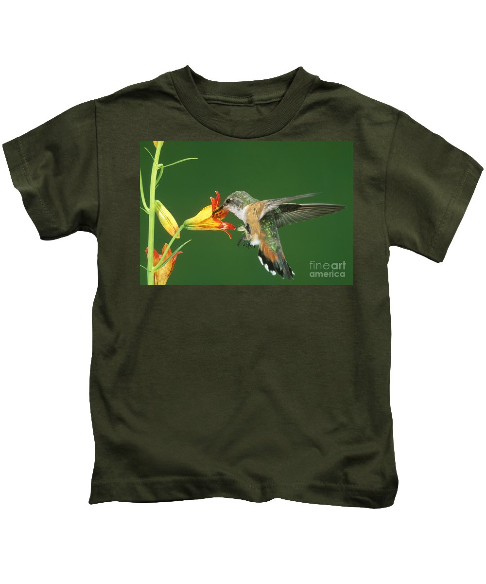 Fauna Kids T-Shirt featuring the photograph Rufous Hummingbird At Tiger Lily by Anthony Mercieca