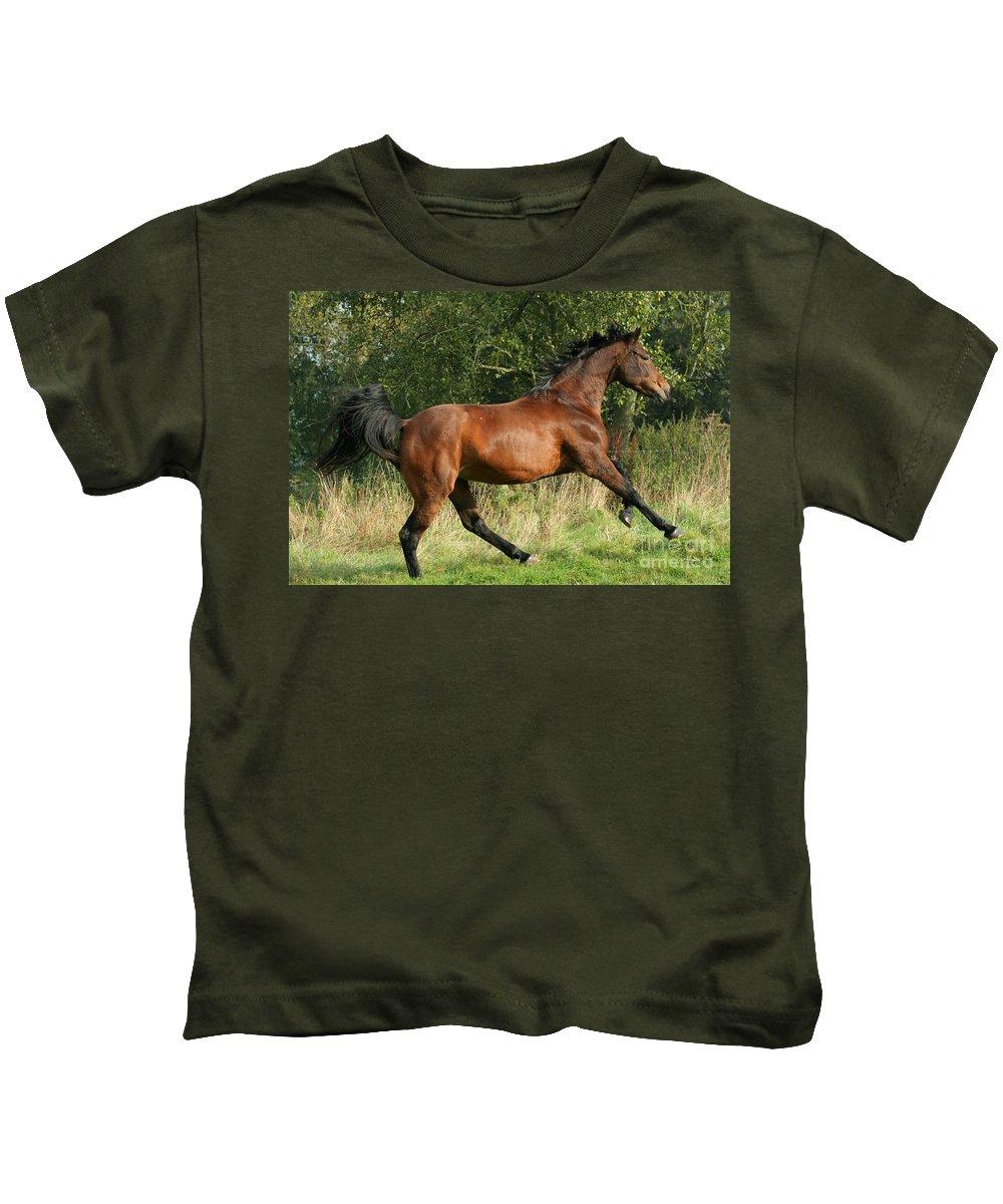 Horse Kids T-Shirt featuring the photograph run by Angel Ciesniarska