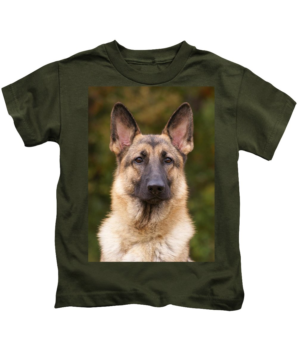 German Shepherd Kids T-Shirt featuring the photograph Sable German Shepherd Dog by Sandy Keeton