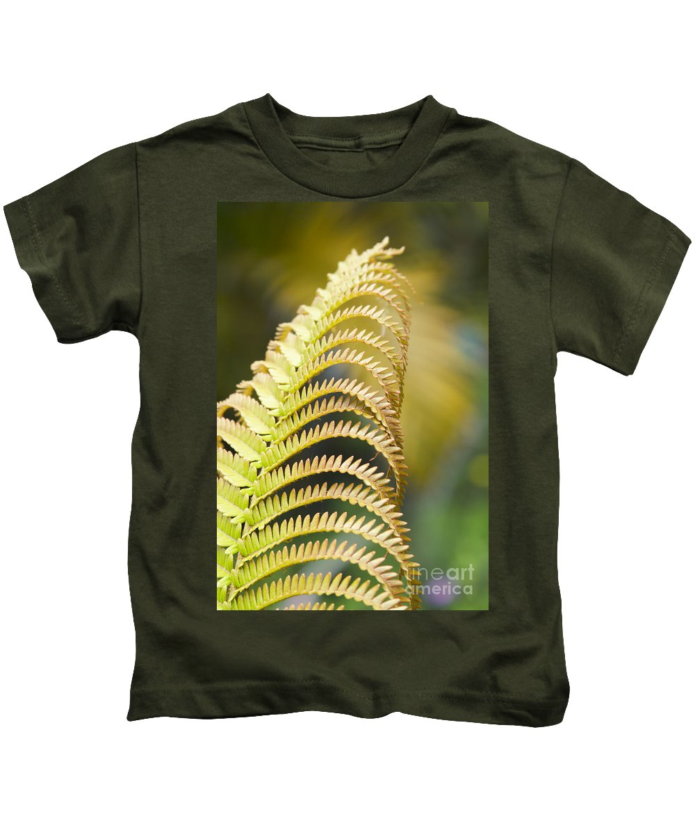 Amau Kids T-Shirt featuring the photograph Sadleria Cyatheoides Amau Fern Maui Hawaii by Sharon Mau
