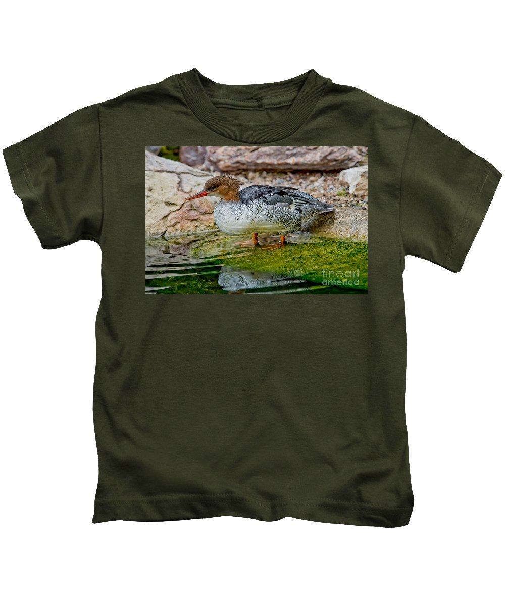 Anatidae Kids T-Shirt featuring the photograph Scaly-sided Merganser Hen by Anthony Mercieca