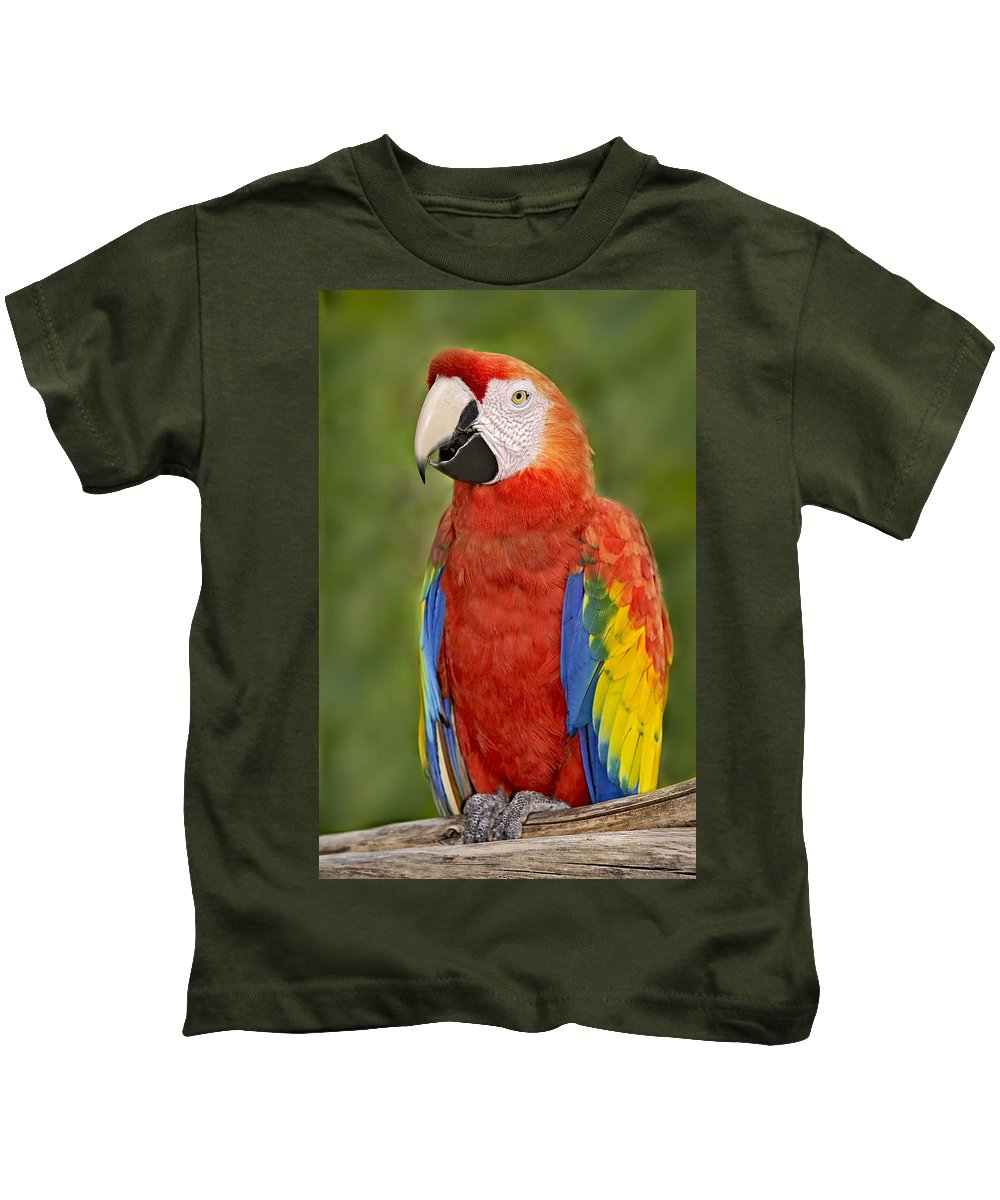 Amazon Kids T-Shirt featuring the photograph Scarlet Macaw Parrot by Susan Candelario