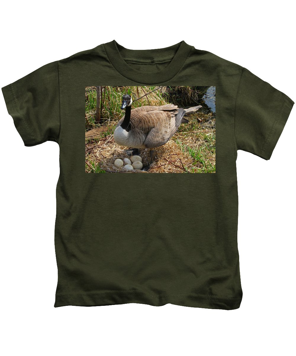 Goose Kids T-Shirt featuring the photograph See My Eggs by Elizabeth Winter
