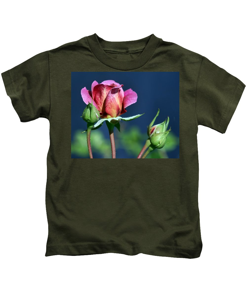 Pink Kids T-Shirt featuring the photograph September Rose by Nikolyn McDonald