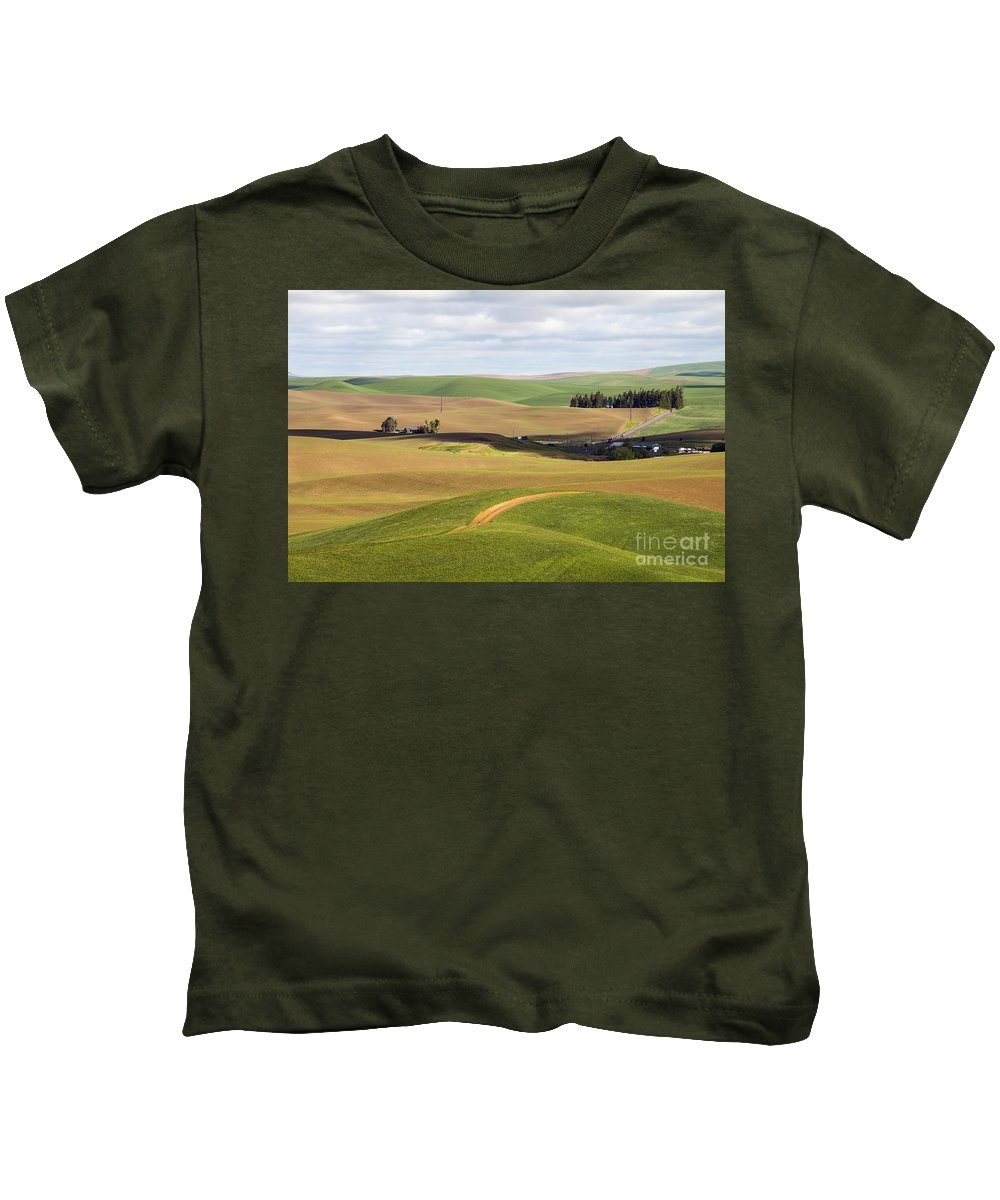 Palouse Area Kids T-Shirt featuring the photograph Shadow Division by Bob Phillips