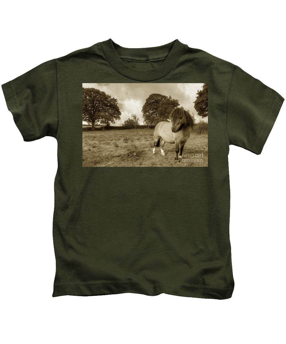 Shetland Kids T-Shirt featuring the photograph Shetland Pony by Rob Hawkins