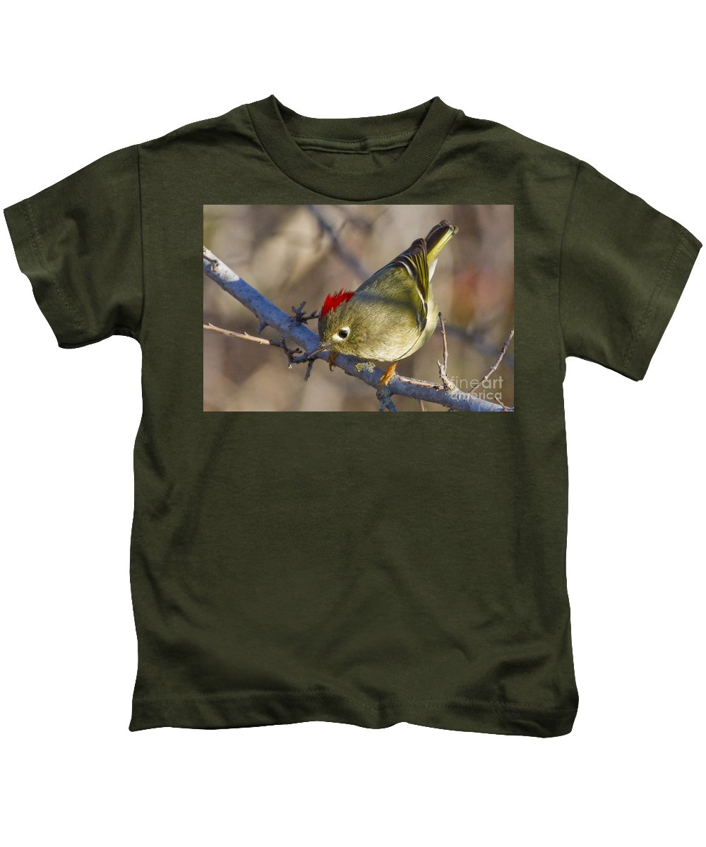 Show-off Kids T-Shirt featuring the photograph Show-off by Gary Holmes