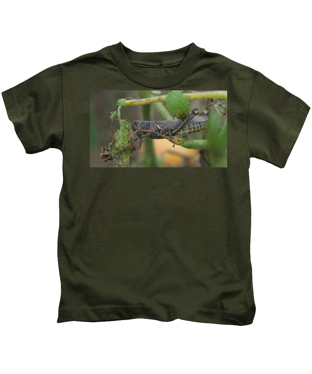 Garden Kids T-Shirt featuring the photograph Side Of Big Brown Grasshopper by Rob Luzier