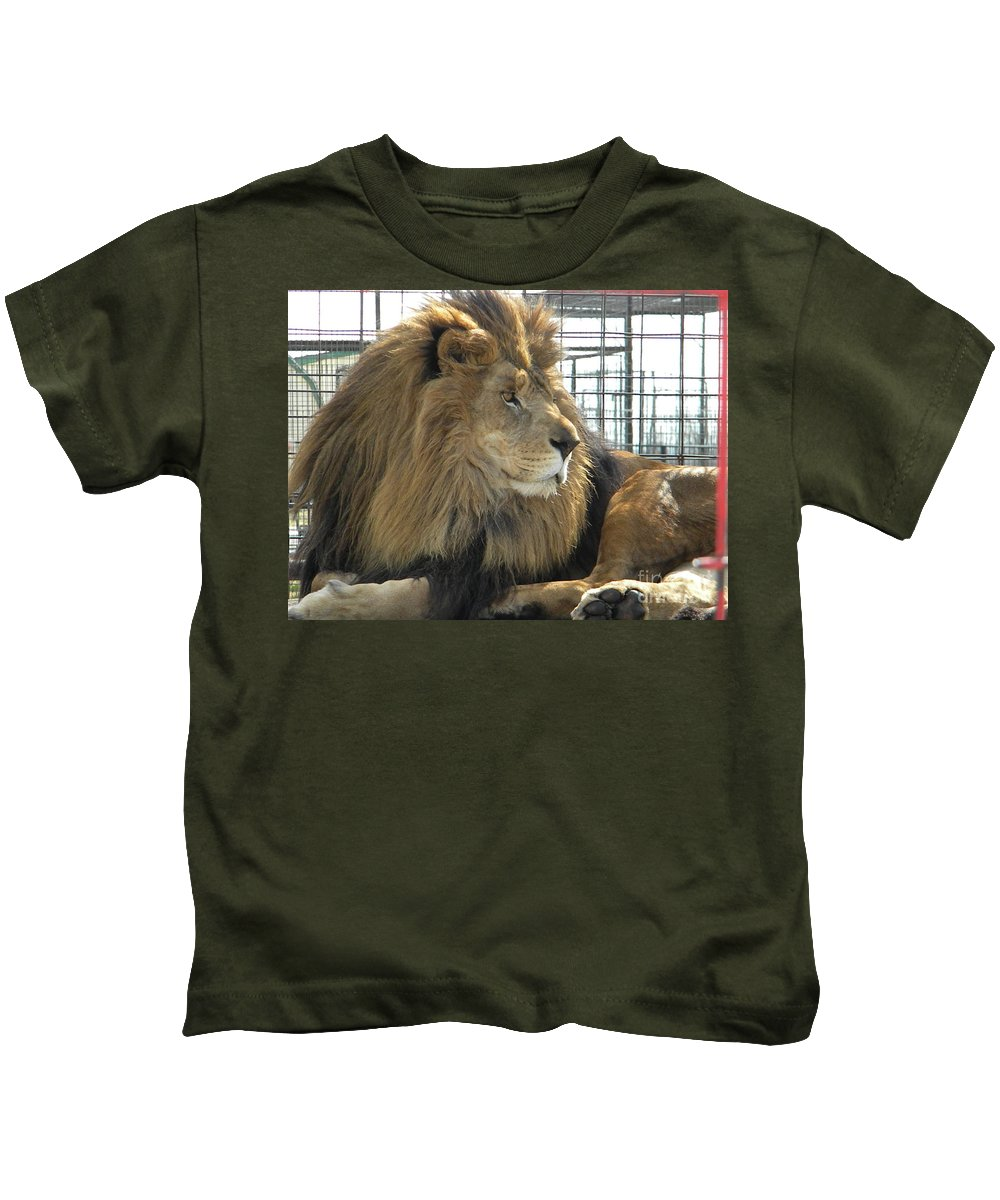 Lion Kids T-Shirt featuring the photograph Simon by Nathanael Smith