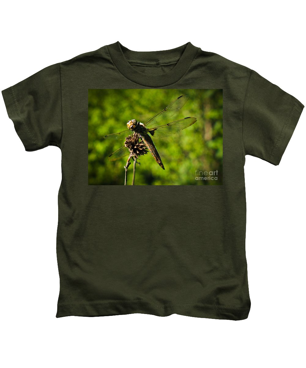 Kids T-Shirt featuring the photograph Smiling Dragonfly by Cheryl Baxter