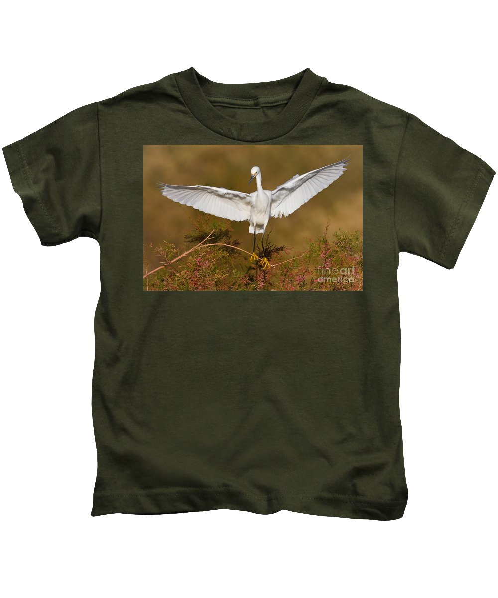 Egret Kids T-Shirt featuring the photograph Snowy Wingspread by Bryan Keil
