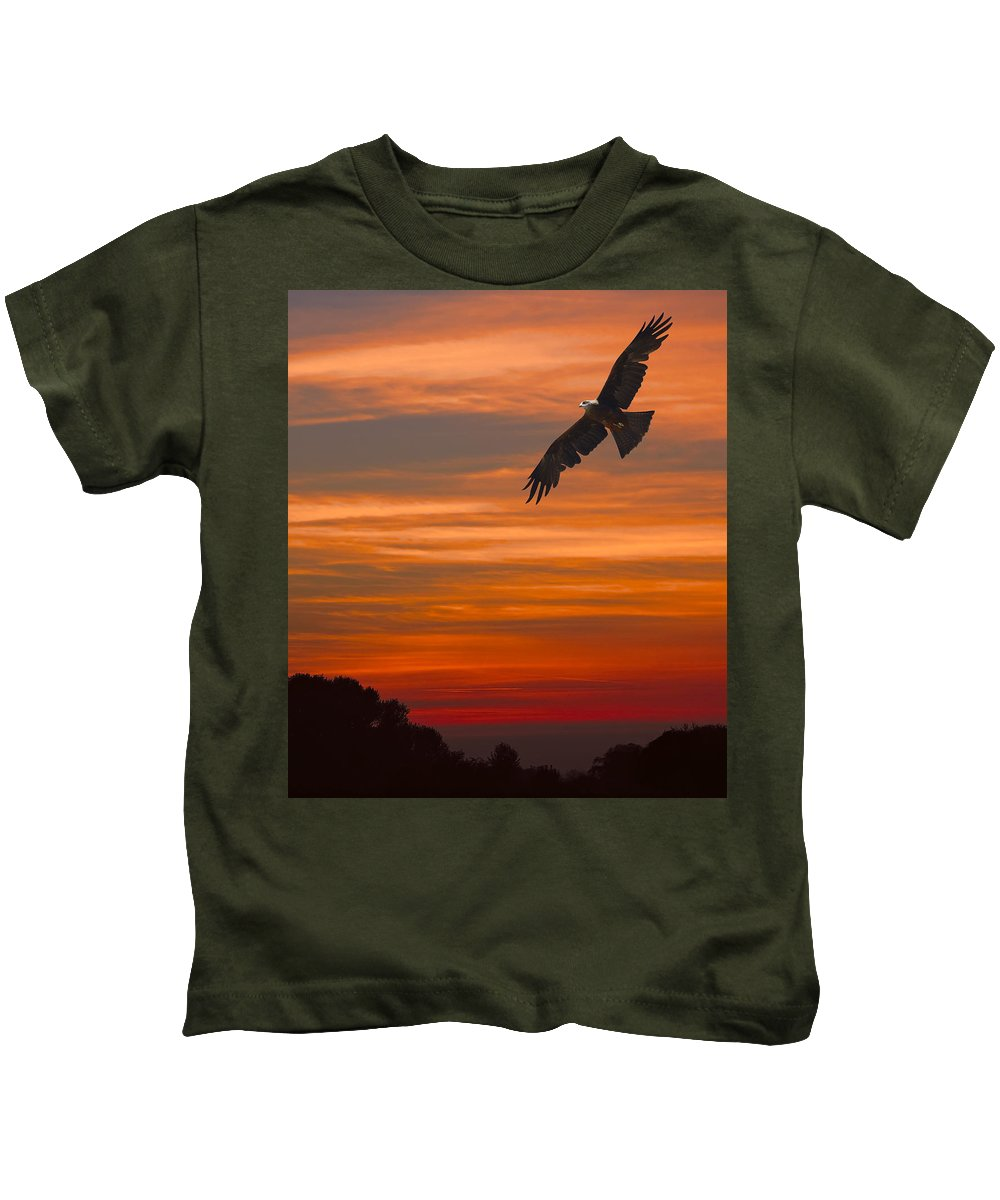 Bird Kids T-Shirt featuring the photograph Soaring Bird Of Prey by Daniel Hagerman