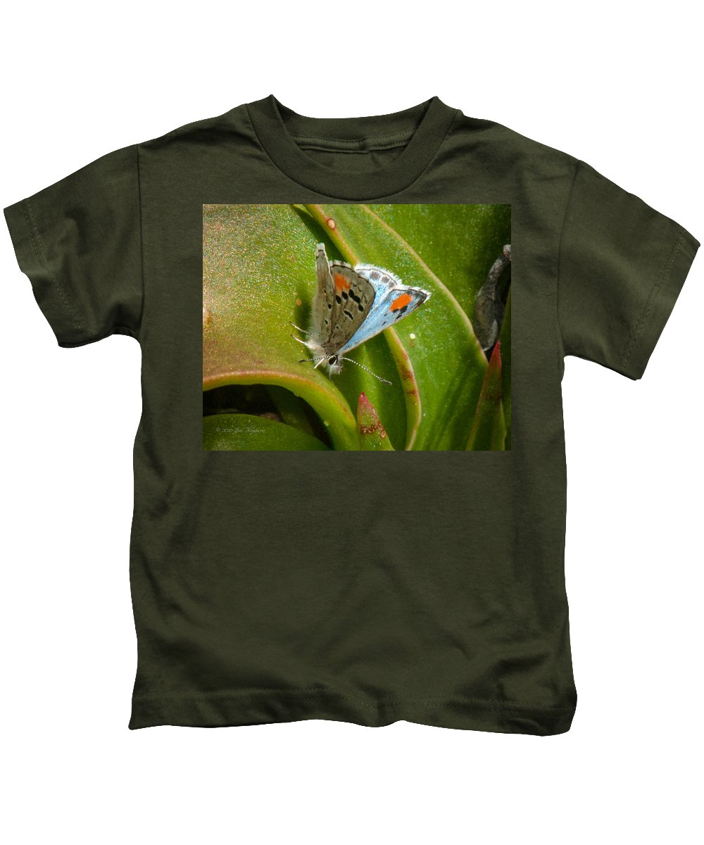 Butterfly Kids T-Shirt featuring the photograph Sonoran Blue by Jim Thompson