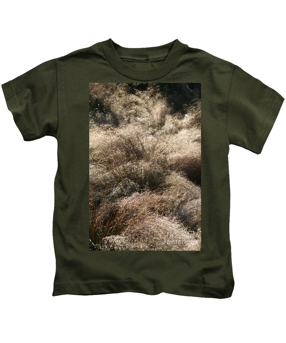 Grasses Kids T-Shirt featuring the photograph Sparkling Grasses by Nadine Rippelmeyer