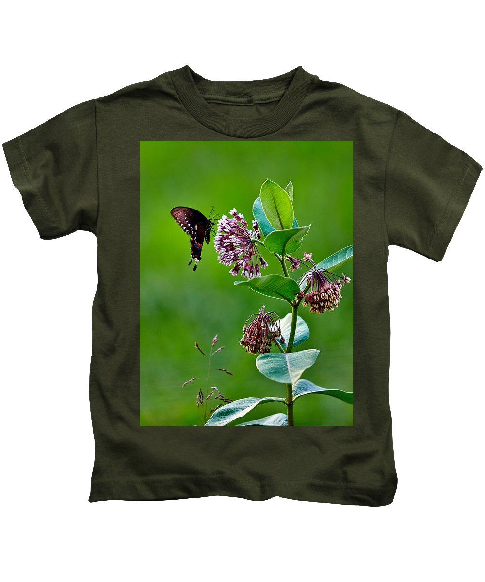 Spicebush Swallowtail Kids T-Shirt featuring the photograph Spicebush Swallowtail by Brian Simpson