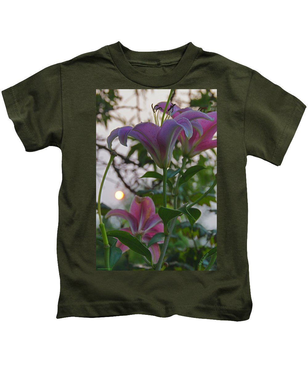 Stargazer Kids T-Shirt featuring the photograph Stargazer Sunset by Mick Anderson