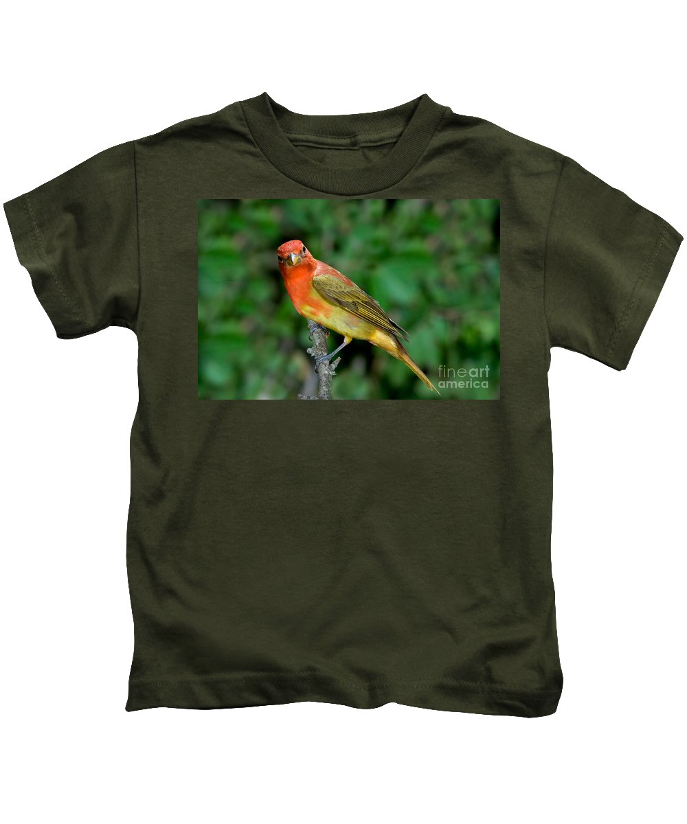 Fauna Kids T-Shirt featuring the photograph Summer Tanager Changing Color by Anthony Mercieca