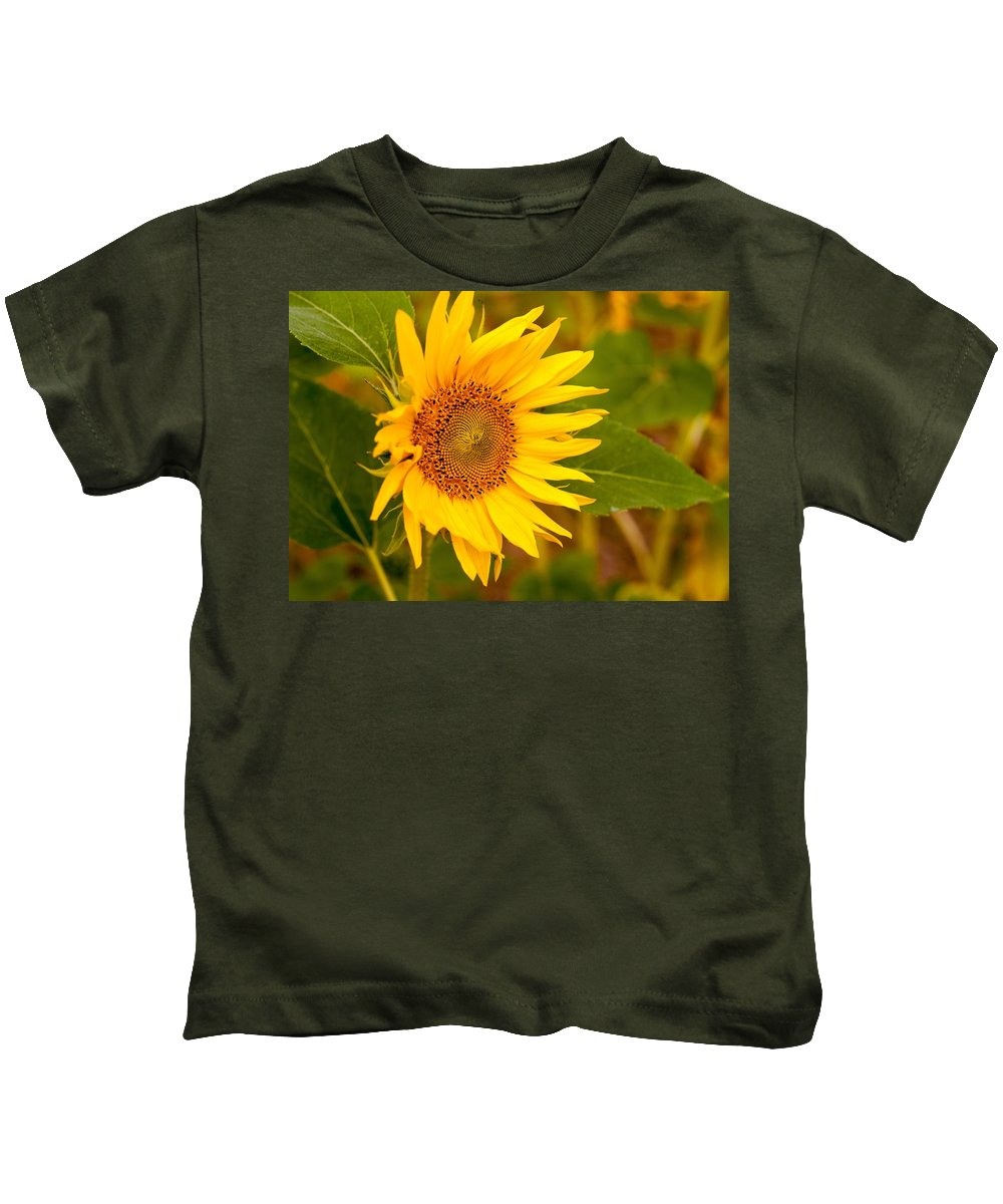 Miguel Kids T-Shirt featuring the photograph Sunny Sunflower Fields by Miguel Winterpacht
