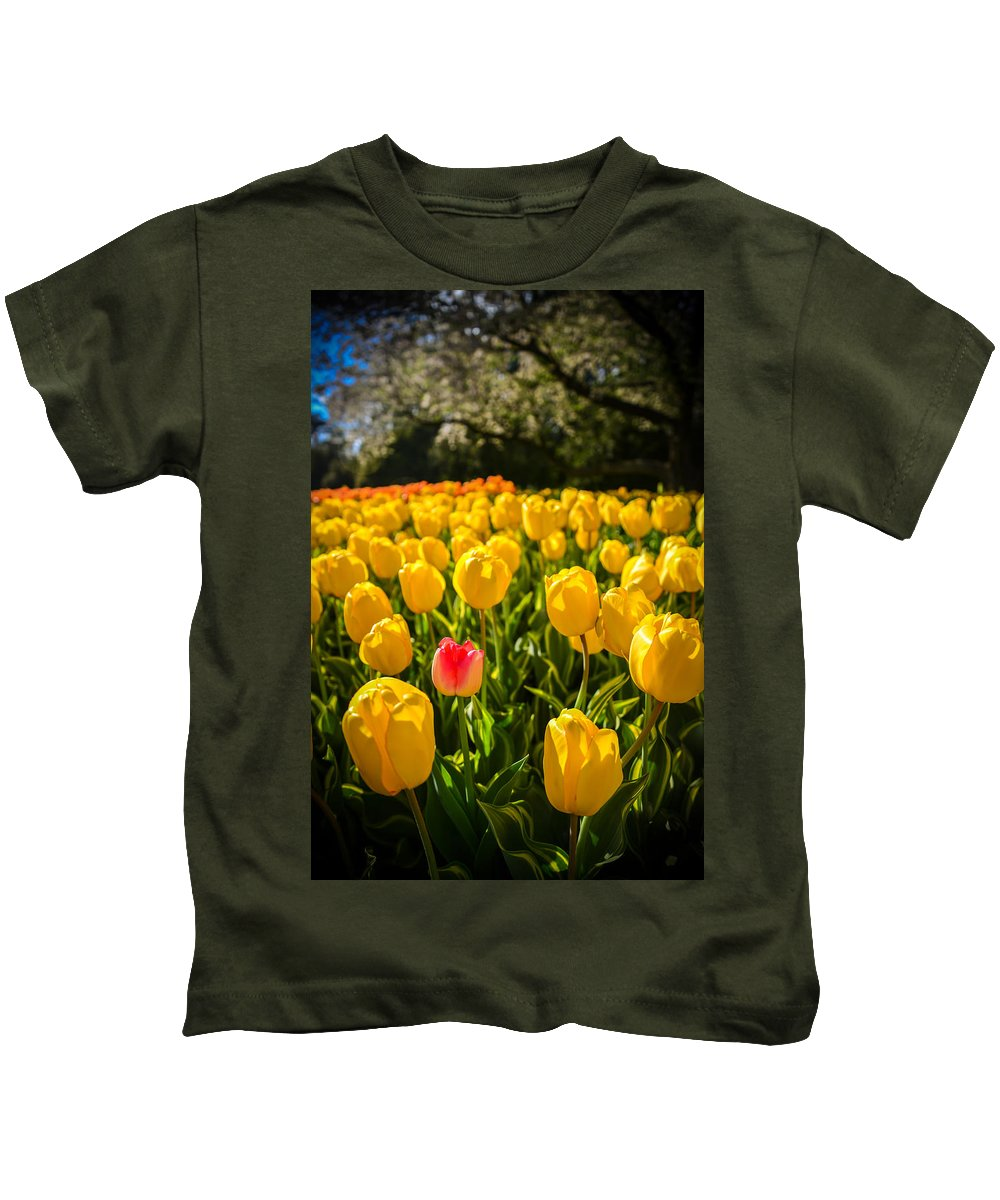 Longwood Gardens Photographs Kids T-Shirts