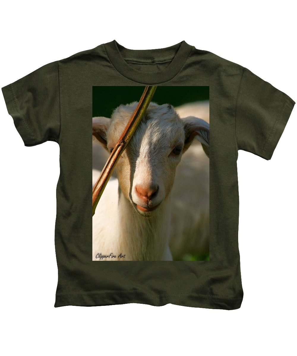 Goat Kids T-Shirt featuring the photograph Sweet Kid by Tracey Beer