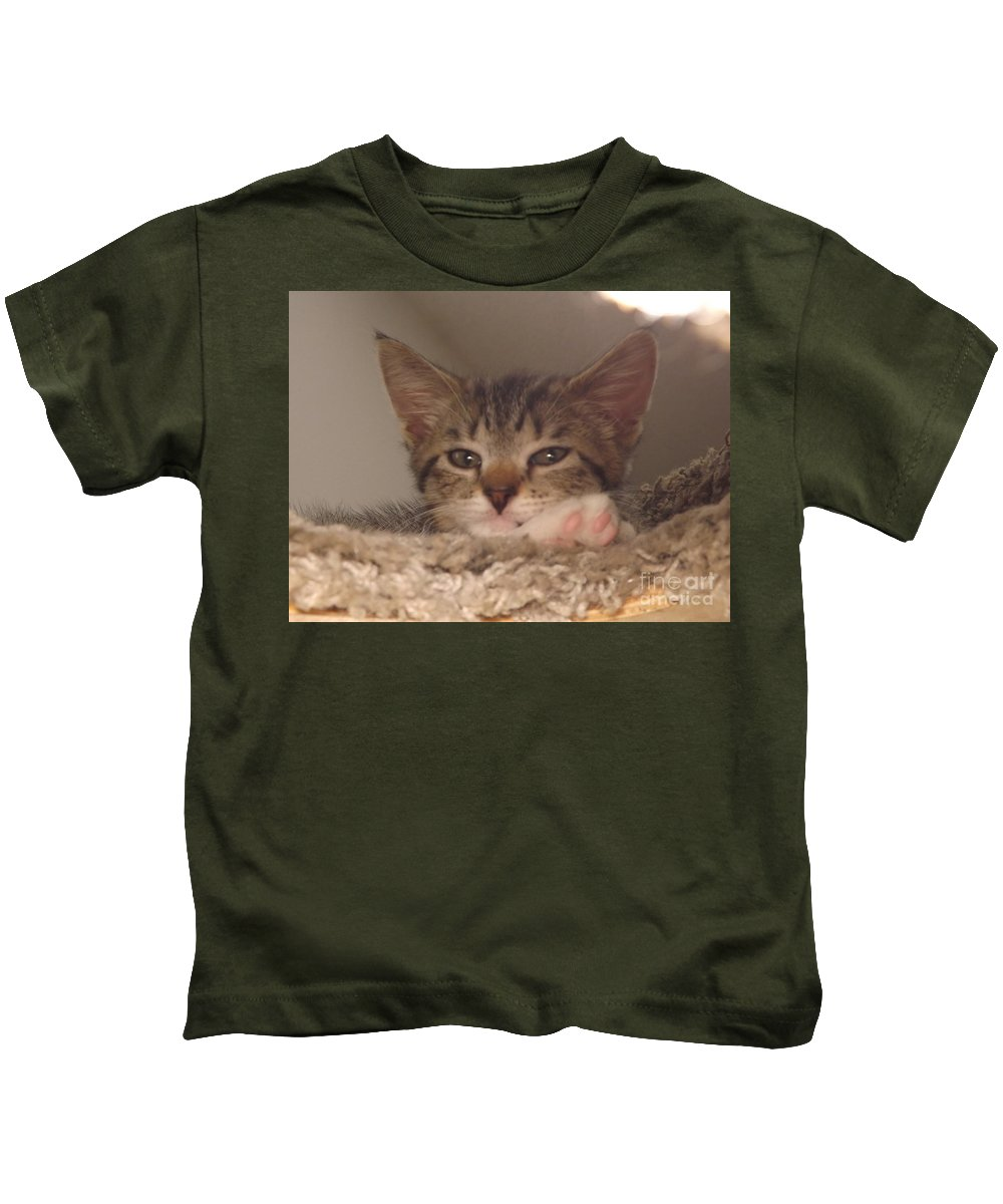 Kittens Kids T-Shirt featuring the photograph Symphony Keeping Watch by Jussta Jussta