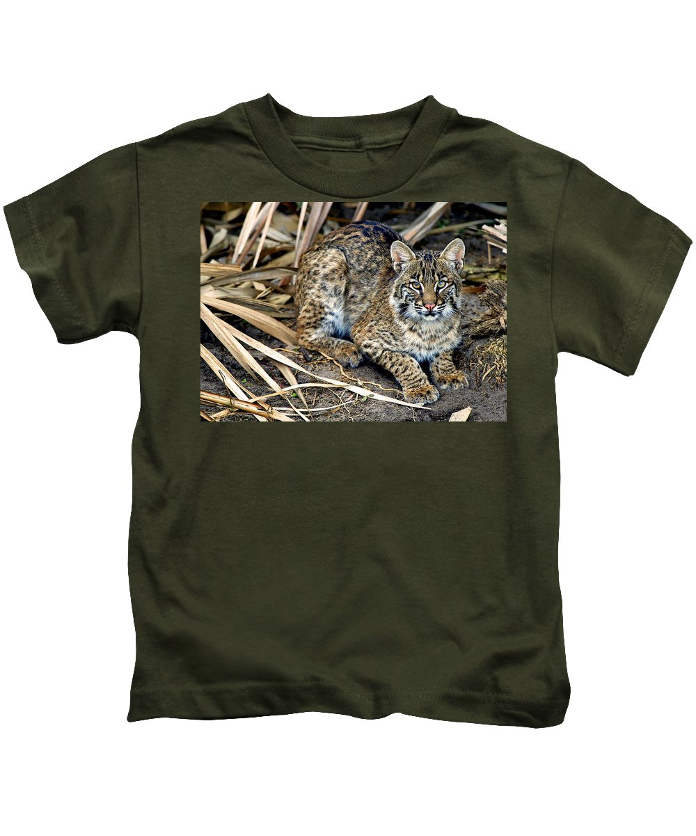 Big Bob Cat Kids T-Shirt featuring the photograph Take The Picture And Move On by Davids Digits