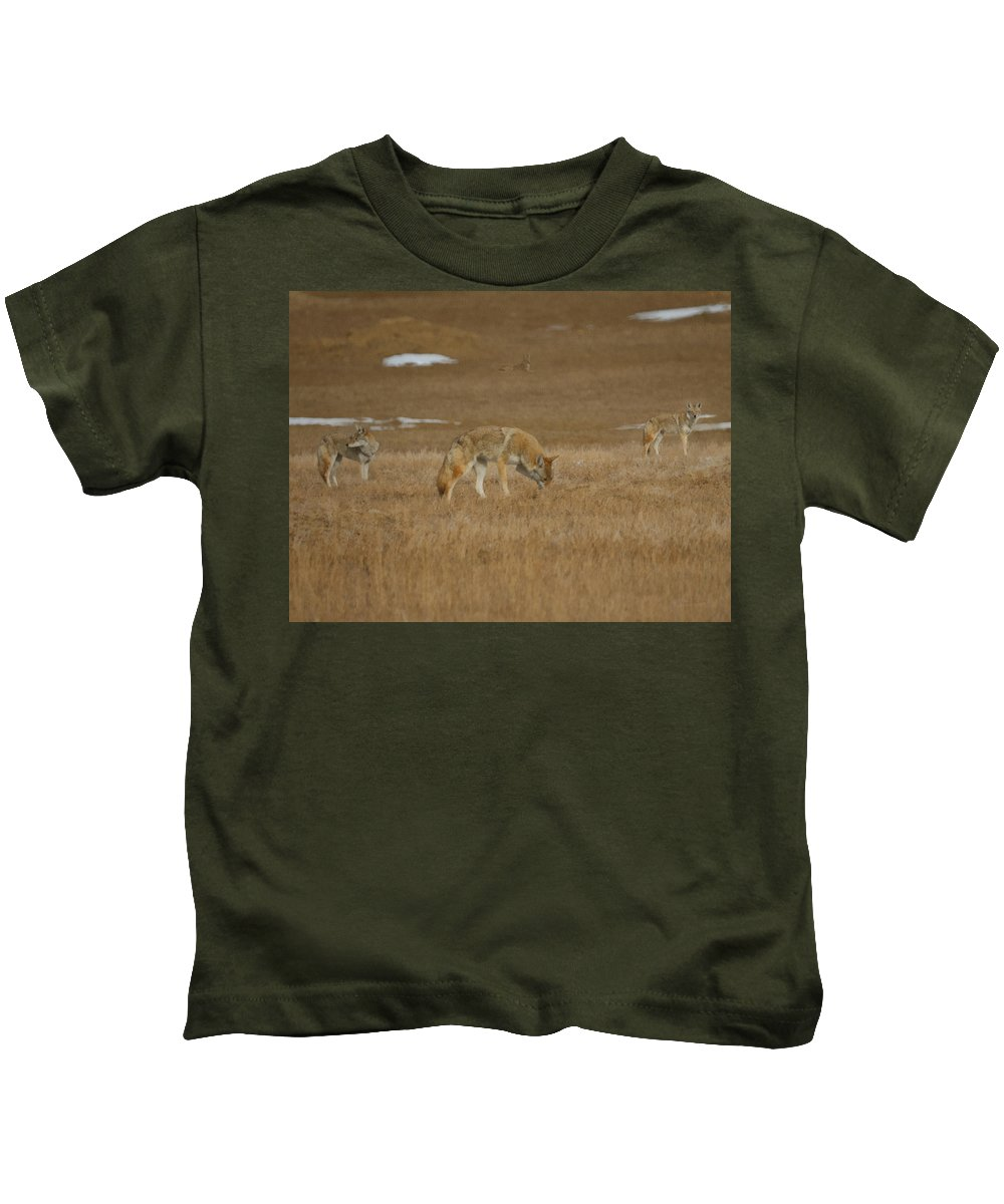 The Coyote Kids T-Shirt featuring the digital art The Coyotes Painterly by Ernie Echols