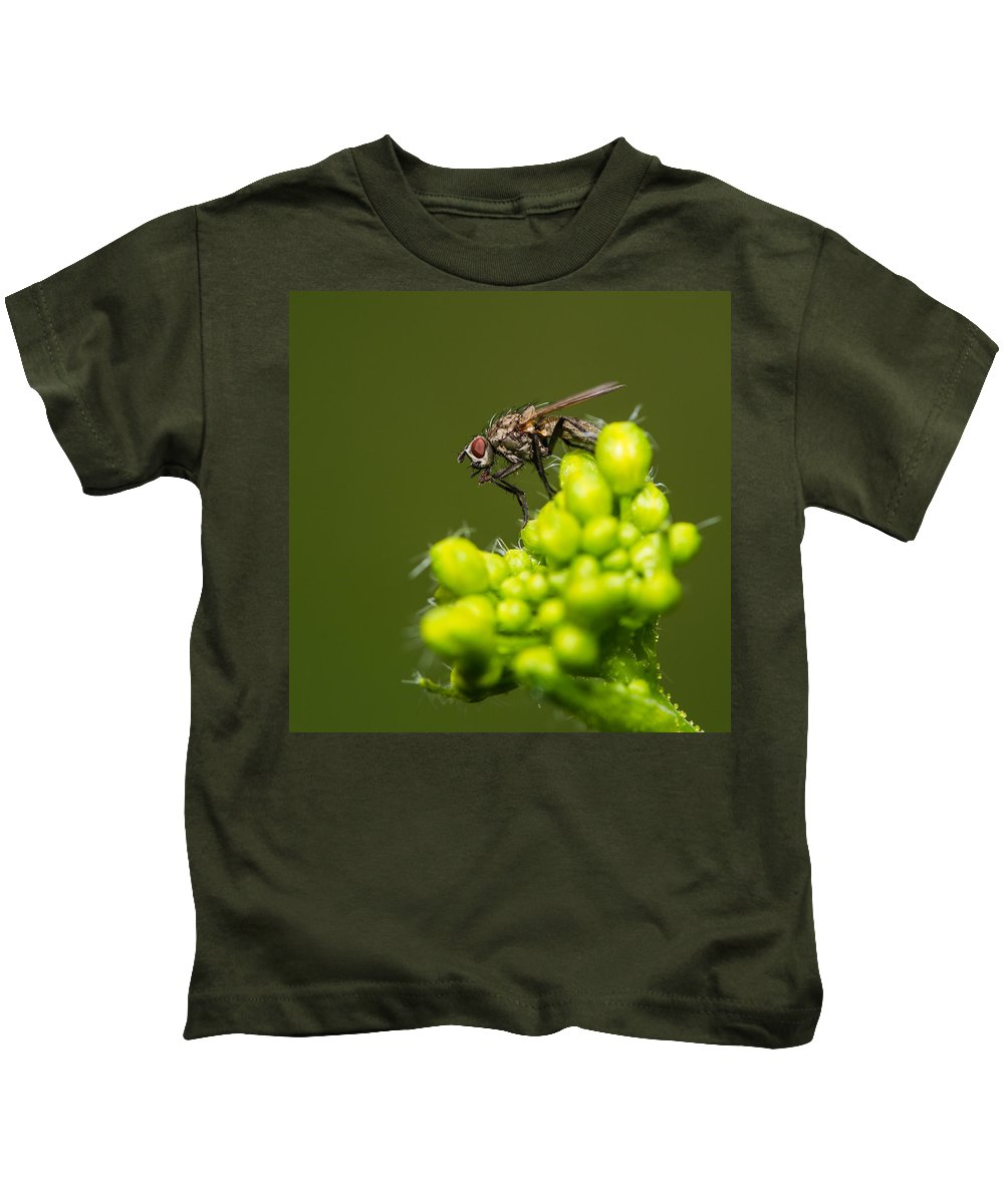 Animal Kids T-Shirt featuring the photograph The Hidden World Of Khaki Square - Featured 3 by Alexander Senin
