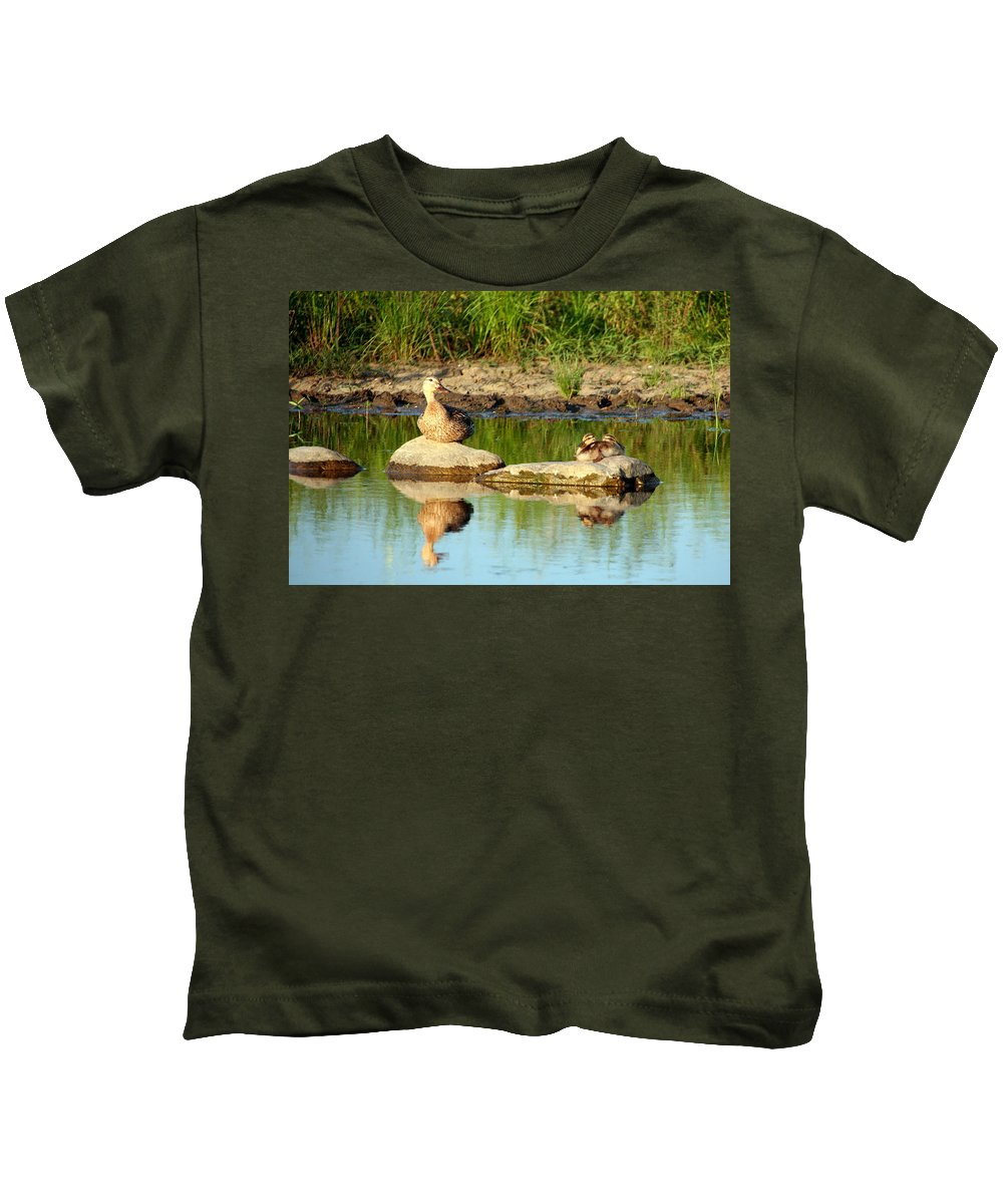 Duck Kids T-Shirt featuring the photograph These Ducks Rock by Laurel Talabere