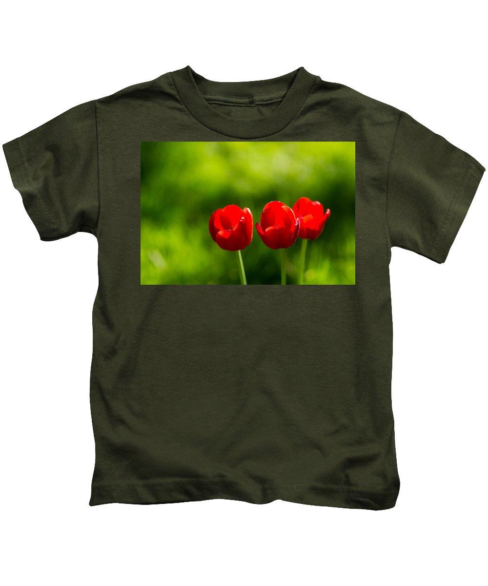 Flower Kids T-Shirt featuring the photograph Three Tulips by Alexander Senin