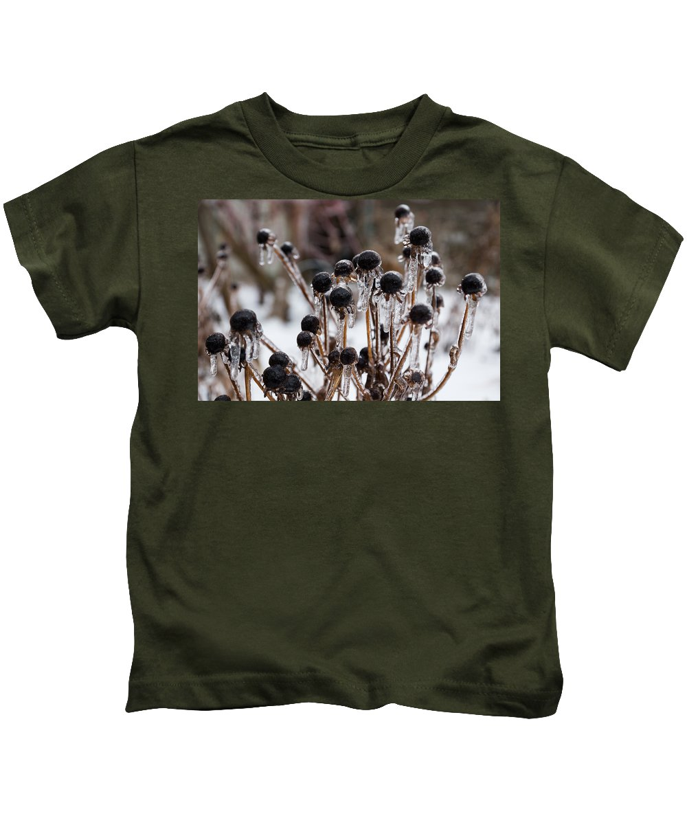 Toronto Ice Storm 2013 Kids T-Shirt featuring the photograph Toronto Ice Storm 2013 - Frozen Black Eyed Susans by Georgia Mizuleva