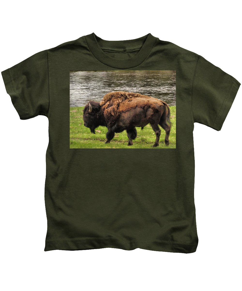 Bison Kids T-Shirt featuring the photograph Tough by Dan Sproul