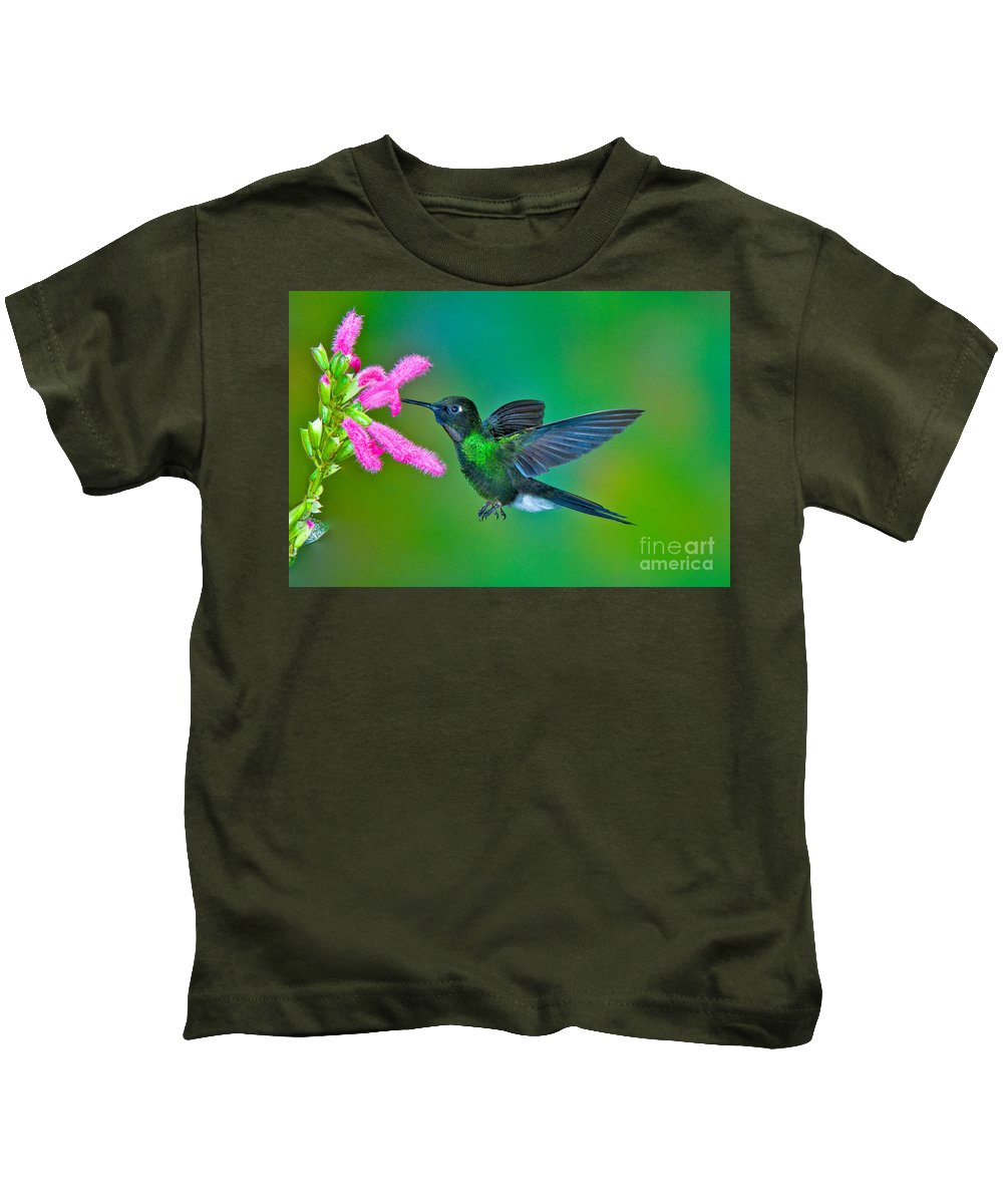 Animal Kids T-Shirt featuring the photograph Tourmaline Sunangel by Anthony Mercieca