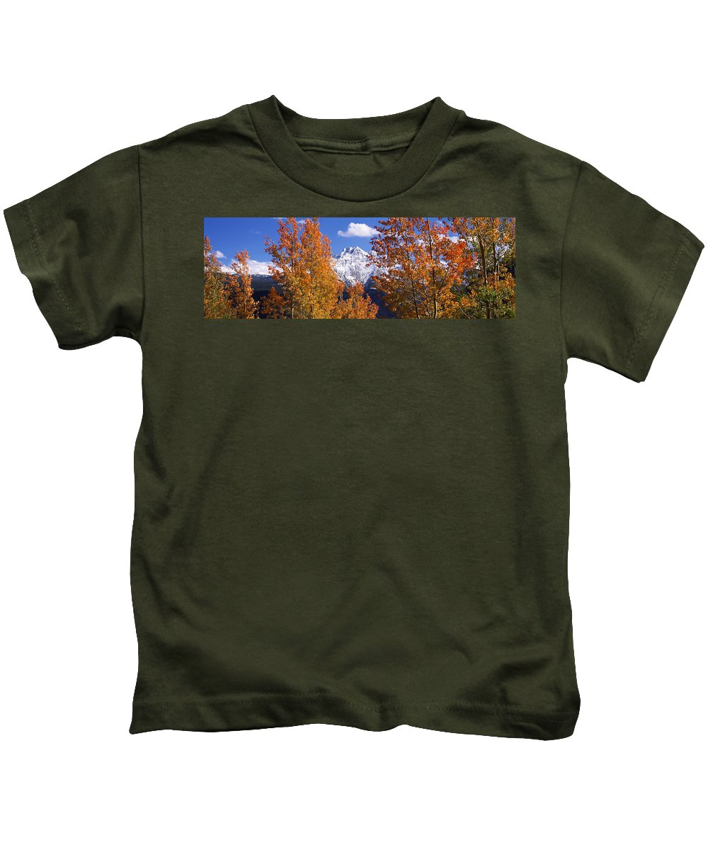 Photography Kids T-Shirt featuring the photograph Trees In Autumn, Colorado, Usa by Panoramic Images